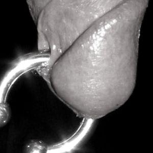 piercing principe alberto pene